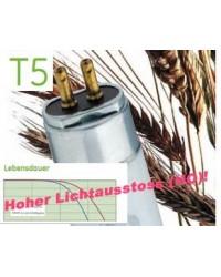 T5 Tageslichtröhre 865 HO 24 Watt