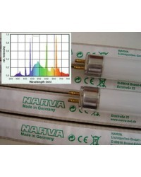 T5 BioVital UV-Vollspektrum HO 54 Watt